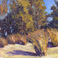 Dune Grasses by Michael Camp