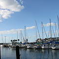 Dunedin Marina I by Christiane Schulze Art And Photography