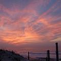 Dunes 33 by Joyce StJames