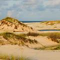 Dunes At Gulf Shore by Kristin Elmquist