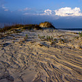 Dunes At St. Simons Island by William Haas