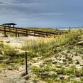 Dunes At Tybee Island by Tammy Wetzel