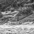 Dunes In Black And White by Karin Everhart