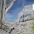 dunes in RI by Agnieszka Adamska
