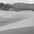 Dunes In The Valley Black And White by Adam Jewell