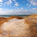 Dunes In Winter by Dianne Cowen