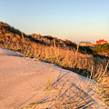 Dunes Of Fire Island by JC Findley