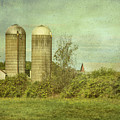 Duo Silos  by Betty Pauwels