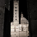 Duomo Di Siena by Carl Jackson