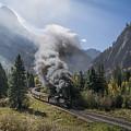 Durango And Silverton Train At Elk Park Wye by Priscilla Burgers