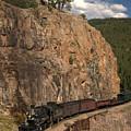 Durango/silverton Narrow Gauge Railroad by Cynthia Sperko