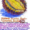 Durian by Evgenii Kuziakin