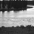 Dusk At The Yellowstone River by Susan Chandler