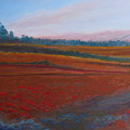 Dusk Falls On The Pumice Field by Jenny Armitage