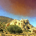 Dust Storm Over Joshua Tree by Dominic Piperata