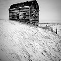 Dutch Barn In Winter by Peter OReilly