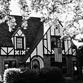 Dutch Manor  by Peggy Leyva Conley
