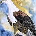 Eagle by Derek Mccrea