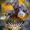Eagle Dreams by Carol Cavalaris