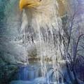 Eagle Falls by Ali Oppy