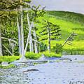 Eagle Lake, Acadia, Maine by David Malia