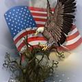 Eagle Lands by Ali Oppy