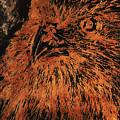 Eagle Metallic Copper by Sheila Sauvageau