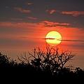 Eagle Nest Sunrise by Bonfire Photography