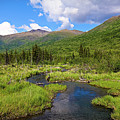 Eagle River- Alaska by Amber D Hathaway Photography