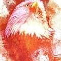 Eagle Tilt by Alice Gipson