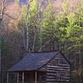 Early Cove Homestead by Wayne Skeen