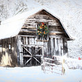 Early December Snowfall Morning by Debra and Dave Vanderlaan