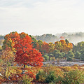 Early Fall Morning by Laura Mace Rand