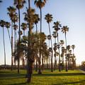 Early Morning In Santa Barbara by Mountain Dreams