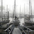 Early Morning On The Docks by Laurie With