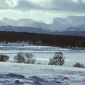 Early Winter - Cairngorm Mountains by Phil Banks