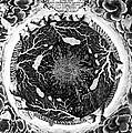Earth: Cross-section, 1664 by Granger