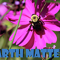 Earth Matters To Bees by Karen Adams