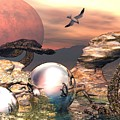 Earth Pearls by Steve Kelly