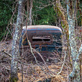 Earth Reclaims A Truck by Jim Durfee