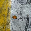 Earth-the Dangers Of Loneliness     by Dragan Vavan