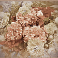 Earth Toned Roses by Karen Beasley