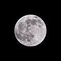 Earth's Moon by Steve Gadomski