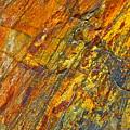 Earths Palette by Karon Melillo DeVega