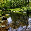 East Beaver Creek by Larry Ricker