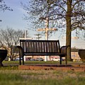 Easter Bench by David Zarecor