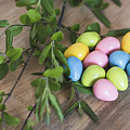 Easter Eggs 20 by Andrea Anderegg