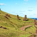 Easter Island Moai At Rano Raraku by Jess Kraft