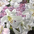 Easter Lilies With Hydrangea by Alfred Ng