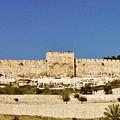 Eastern Gate Temple Mount by Thomas Preston
